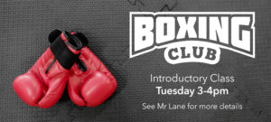 Boxing Club goes from strength to strength