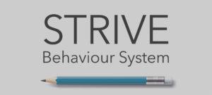 STRIVE Behaviour System