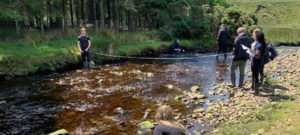Investigations in the Forest of Bowland