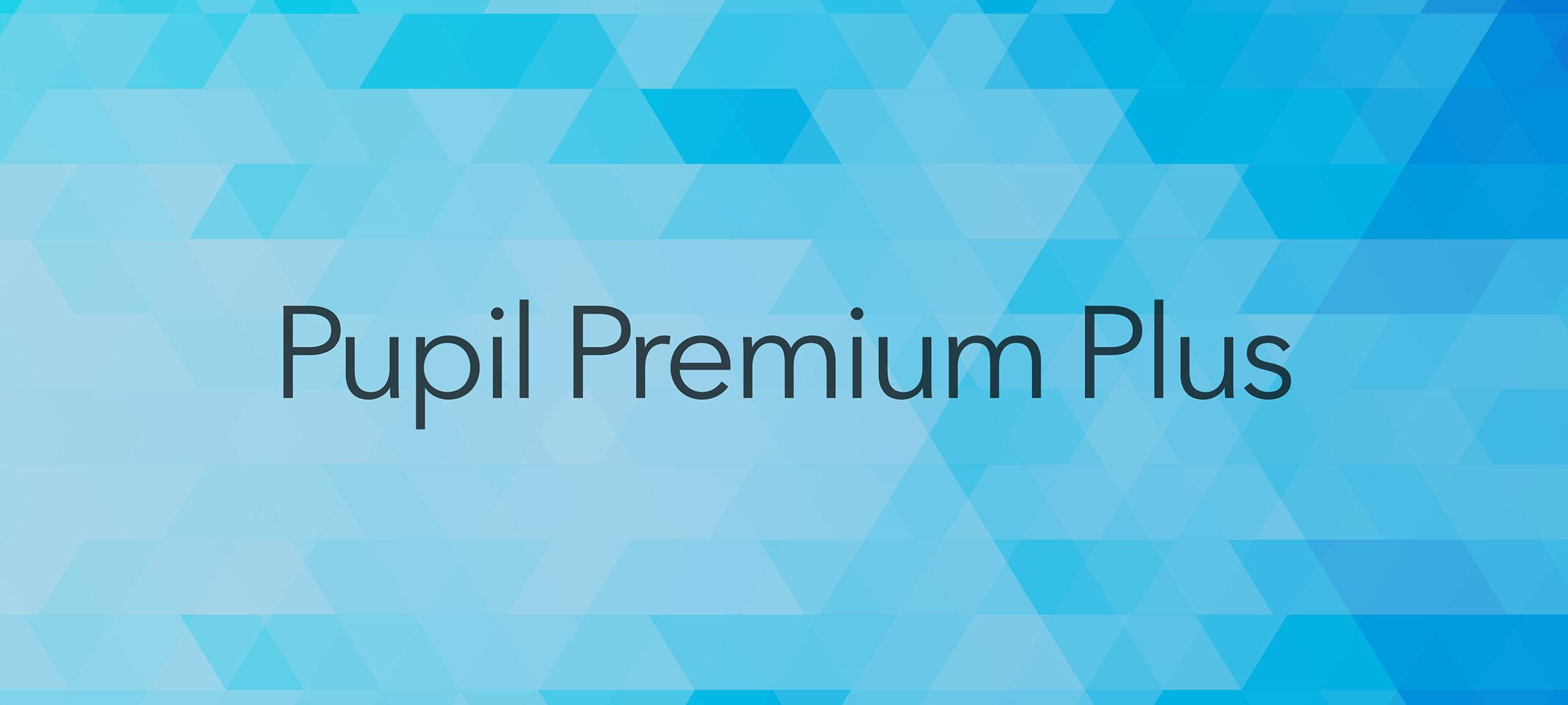 Pupil Premium Plus Funding